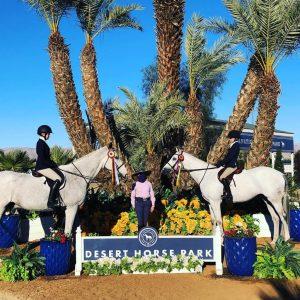 Desert Horse Park - February 2021